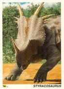 Styracosaurus-card