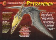 Pteranodon front