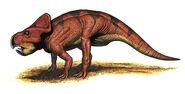 Robert F. Walters Protoceratops