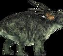 Styracosaurus/Gallery
