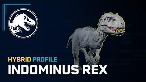Hybrid Profile Indominus Rex