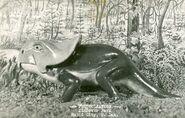 Protoceratops-BW-postcard1-1000x638