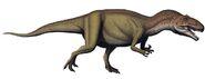 CQ allosaurus-fragilis