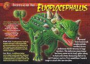 Euoplocephalus front