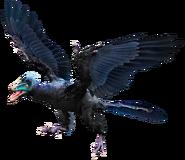 Archaeopteryx hmie72