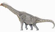 Brachiosaurus DB