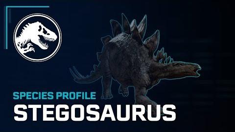 Species Profile - Stegosaurus