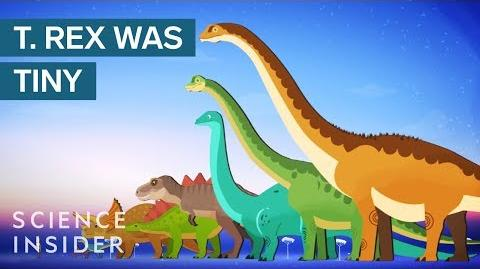 The Biggest Dinosaurs Of All Time