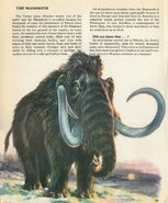 The Mammoth Private Lives of Animals
