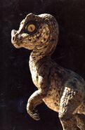 Son of Dinosaurs Ceratosaurus