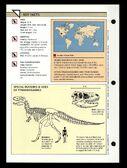 Wildlife fact file T-Rex back