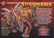 Styracosaurus front