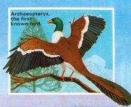 Archaeopteryx The Age of Dinosaurs