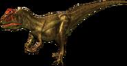 Dino-allo