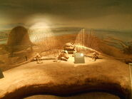 Drumheller dimetrodon (1)