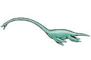 Robert F Walters elasmosaurus