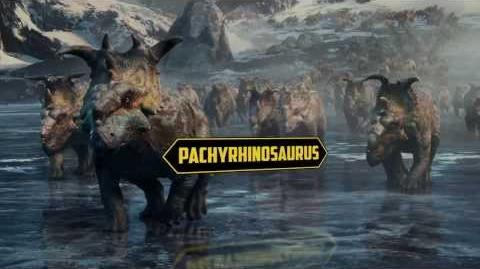 Walking With Dinosaurs Dino Files Thousands Of Dinos 20th Century FOX