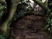 Poisonous Plants North Area - ST10E 00006