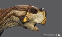 E1b8bfc2d6358f8b4a4058fe01e1faa6--prehistoric-animals-prehistory