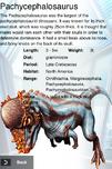 Album Rare Pachycephalosaurus
