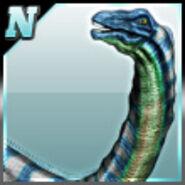Apatosaurus D