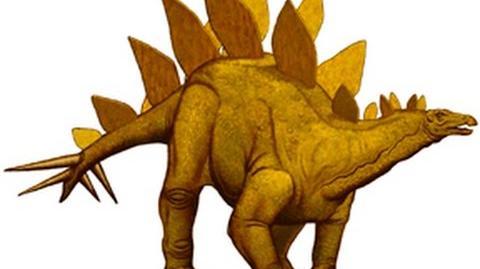 Stegosaurus-0