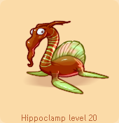 Hippoclamp brown green
