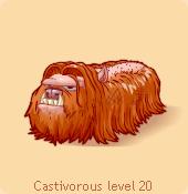Castivorous orange