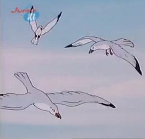 Baygulls