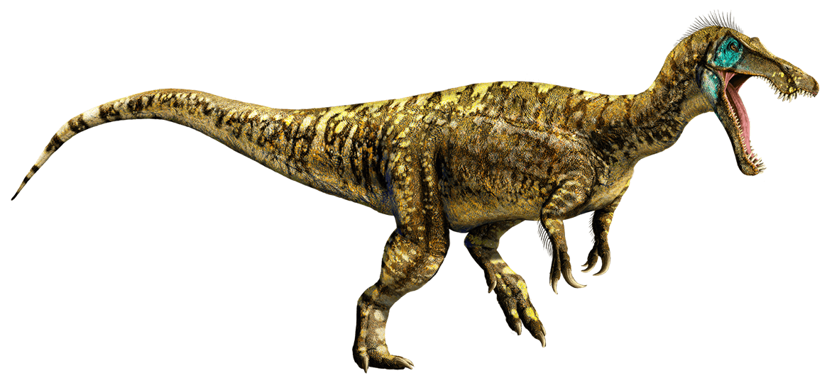 Image result for baryonyx
