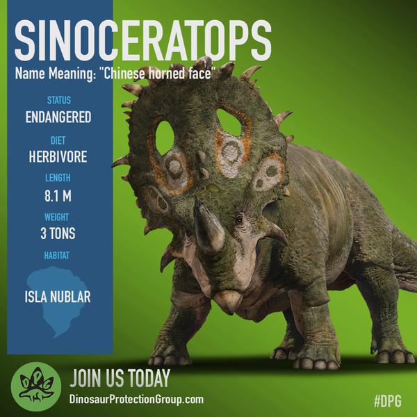 Sinoceratops Dinosaur Protection