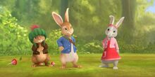 Peter rabbits school friends