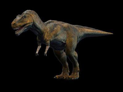 Tyrannosaurus 791 600x450