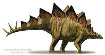 Stegosaurus-stenops