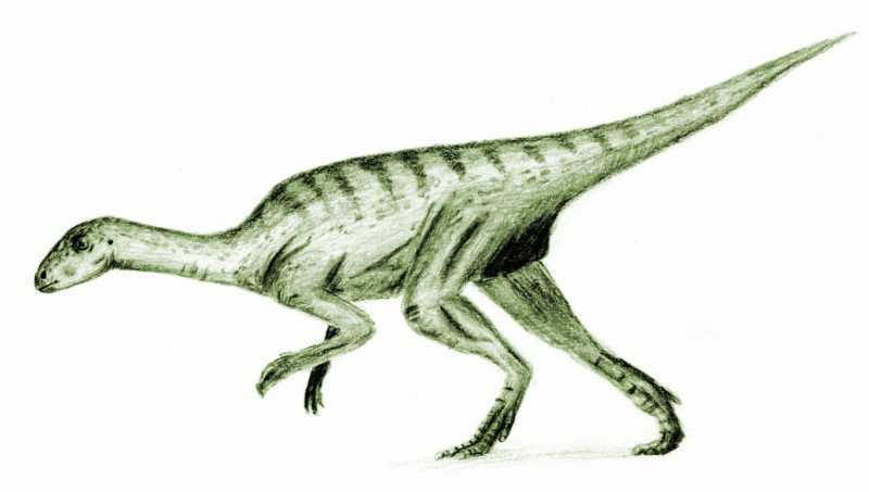 Dinosaurier wiki