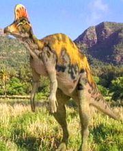 Corythosaurs
