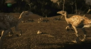 Byronosaurus 2