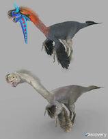 Gigantoraptors