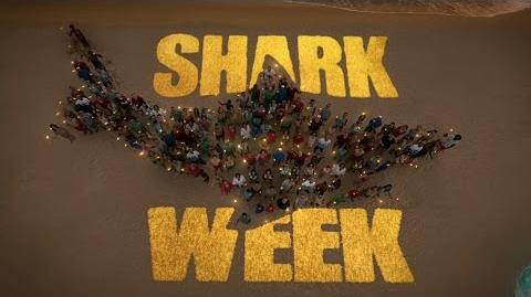 Shark Week Prehistoric Sharks Full Documentary