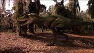 Albertosaurus Grandis