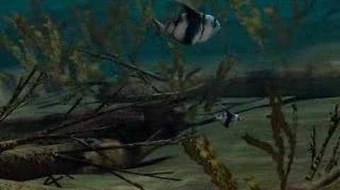 Animation 6 From Oceans Origins of Life
