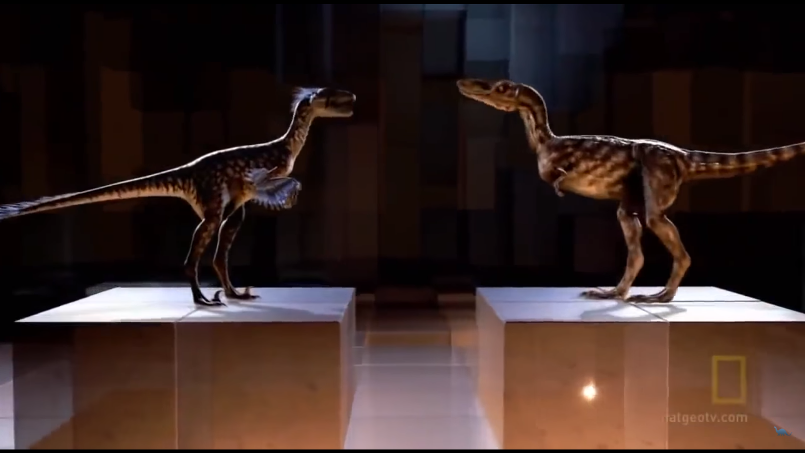 Dakotaraptor_and_young_T-rex.png