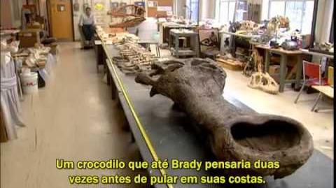 Documentário SuperCroc Legendado PT-BR - Parte 4 (Final)