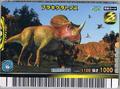 Brachyceratops Card 2