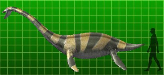 Muraenosaurus | Dinosaur King | FANDOM powered by Wikia  Muraenosaurus |...