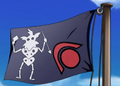 Dr. Z Pirate Flag