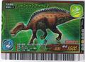 Shantungosaurus Card 4