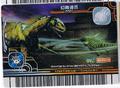 Mayfly Card 6
