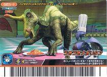 Feeding Card C1