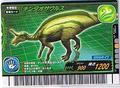 Tsintaosaurus Card 3